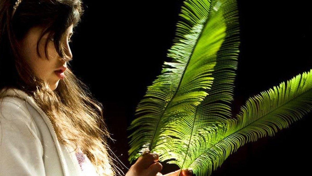 Palmesøndag - gudstjeneste