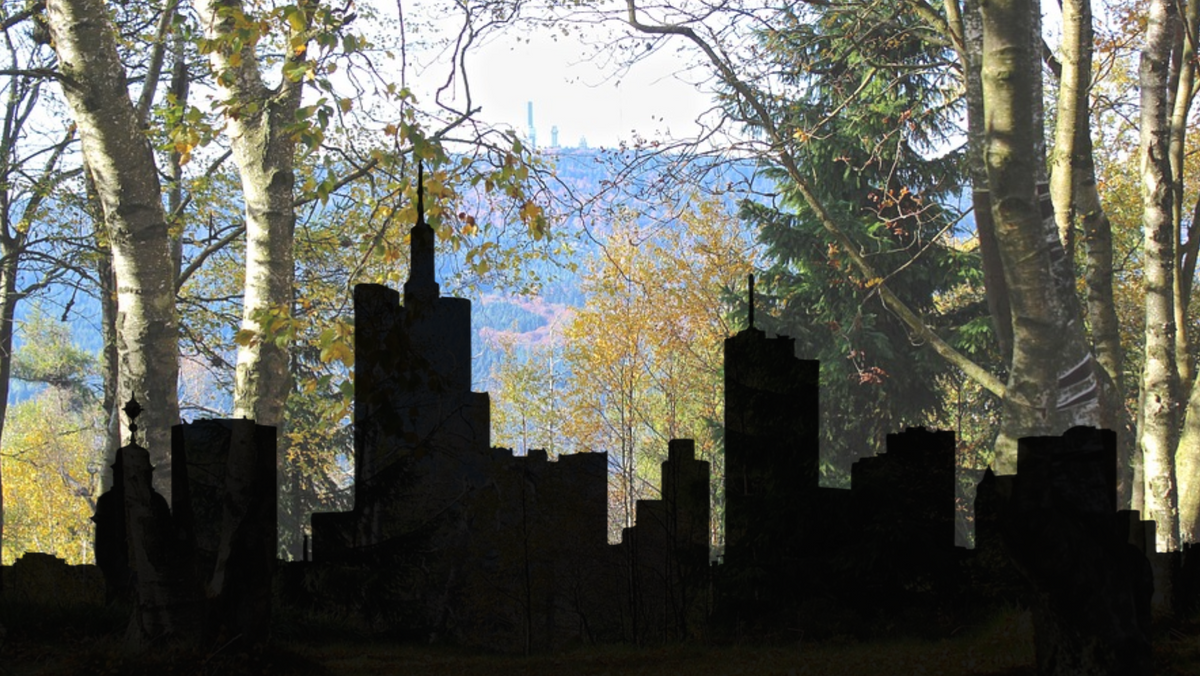 Gemeinde-Wald-Tag