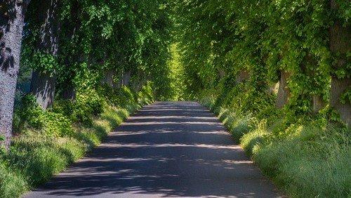 Region Storkow - Möge die Straße uns zusammenführen – Pilgern regional