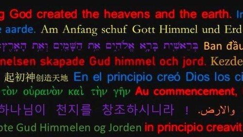 Am Anfang - Bibel lesen und verstehen