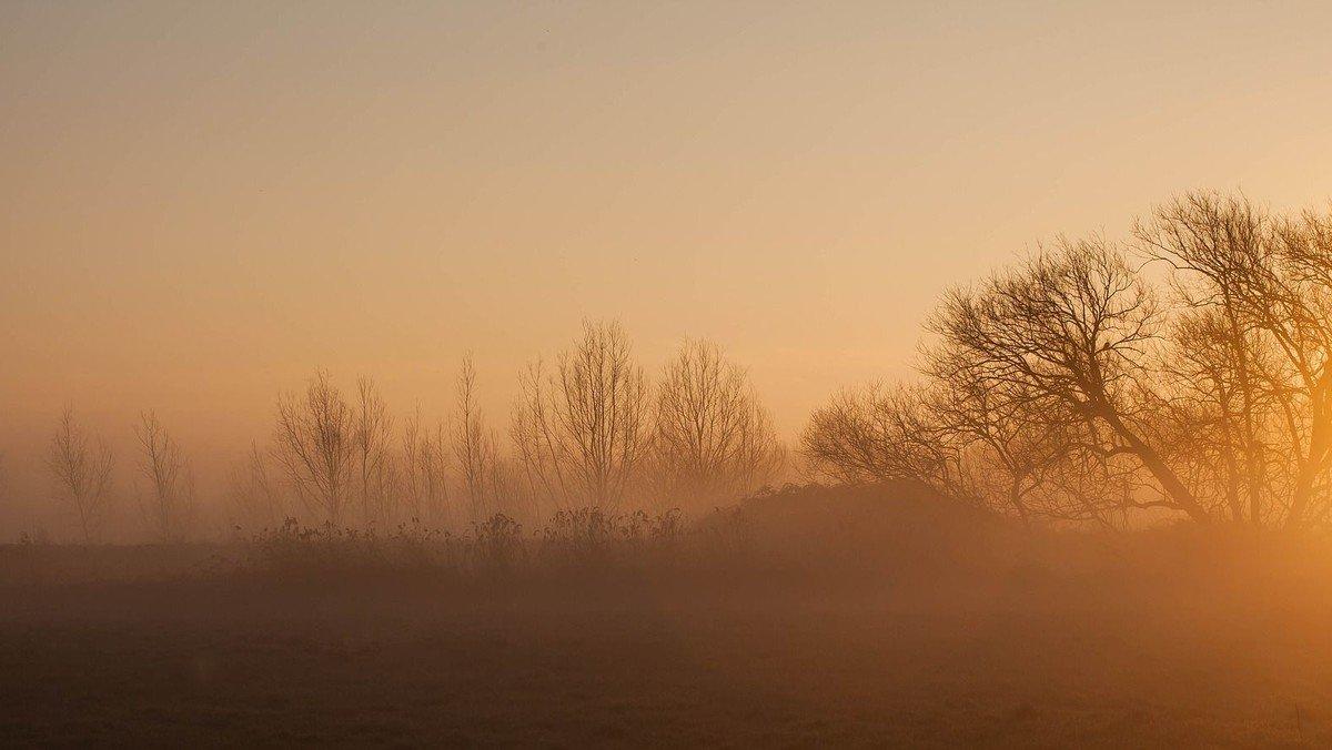 Morgensang - udenfor