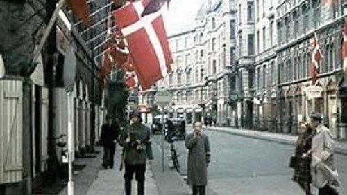 Fejring af Danmarks Befrielse