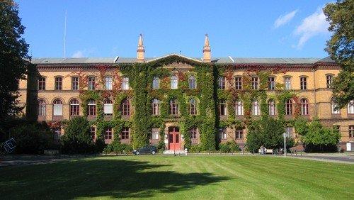 Ungewollt Zeuge und Mitwisser? – Der Krankenhausseelsorger an den Wittenauer Heilstätten in der NS-Zeit