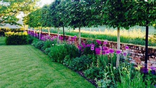 Doddington Open Gardens