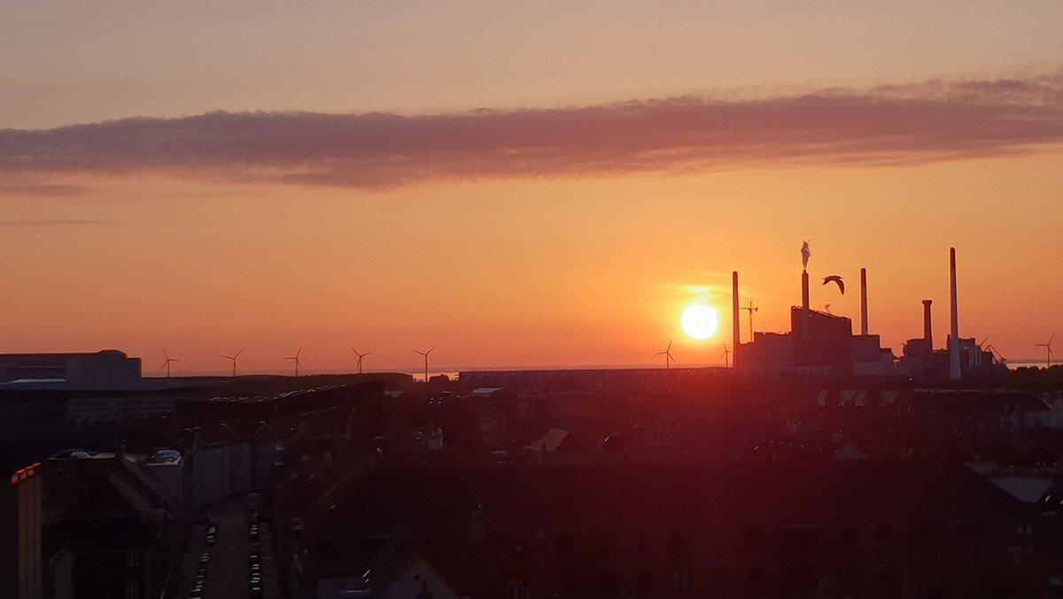 Morgentjeneste ved solopgang