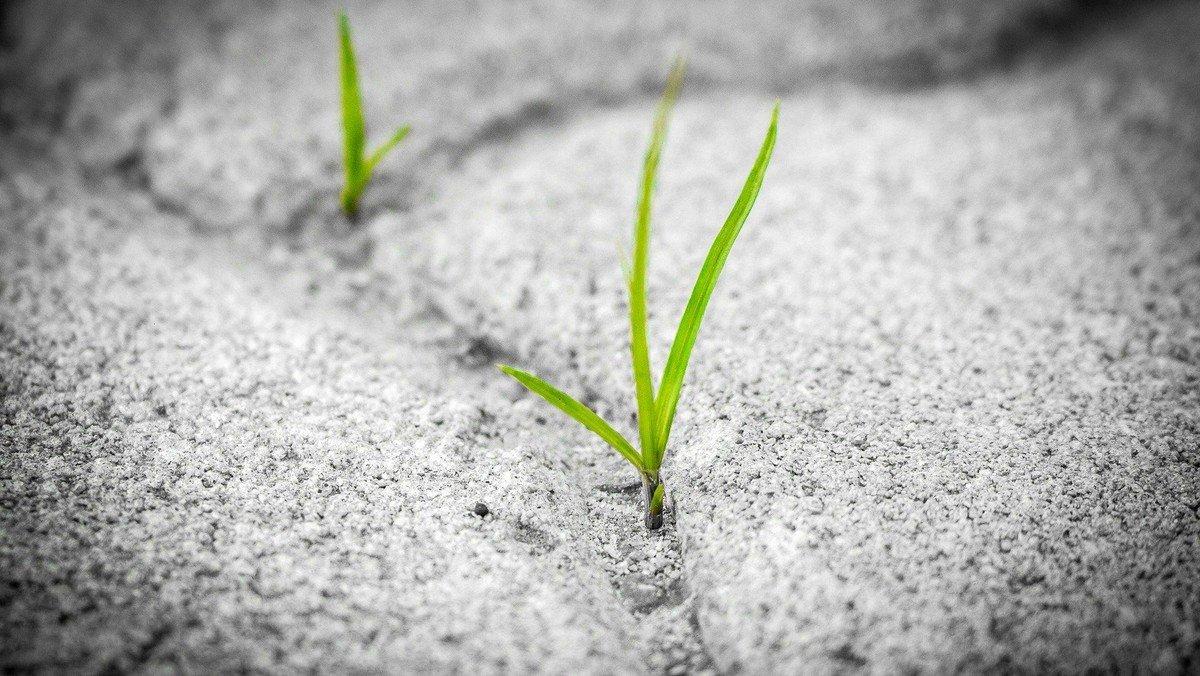 Aftengudstjeneste: Håb for kroppen