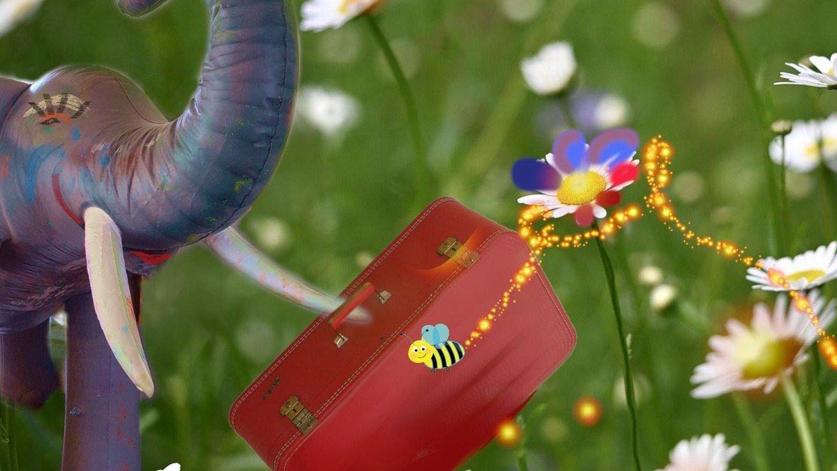 Bertolin öffnet seinen Koffer für die Wildbienen