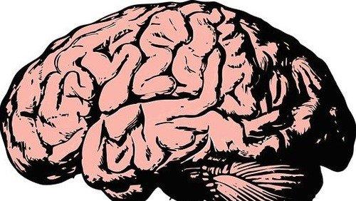 Foredrag: 'Hjerneforskning og tro'