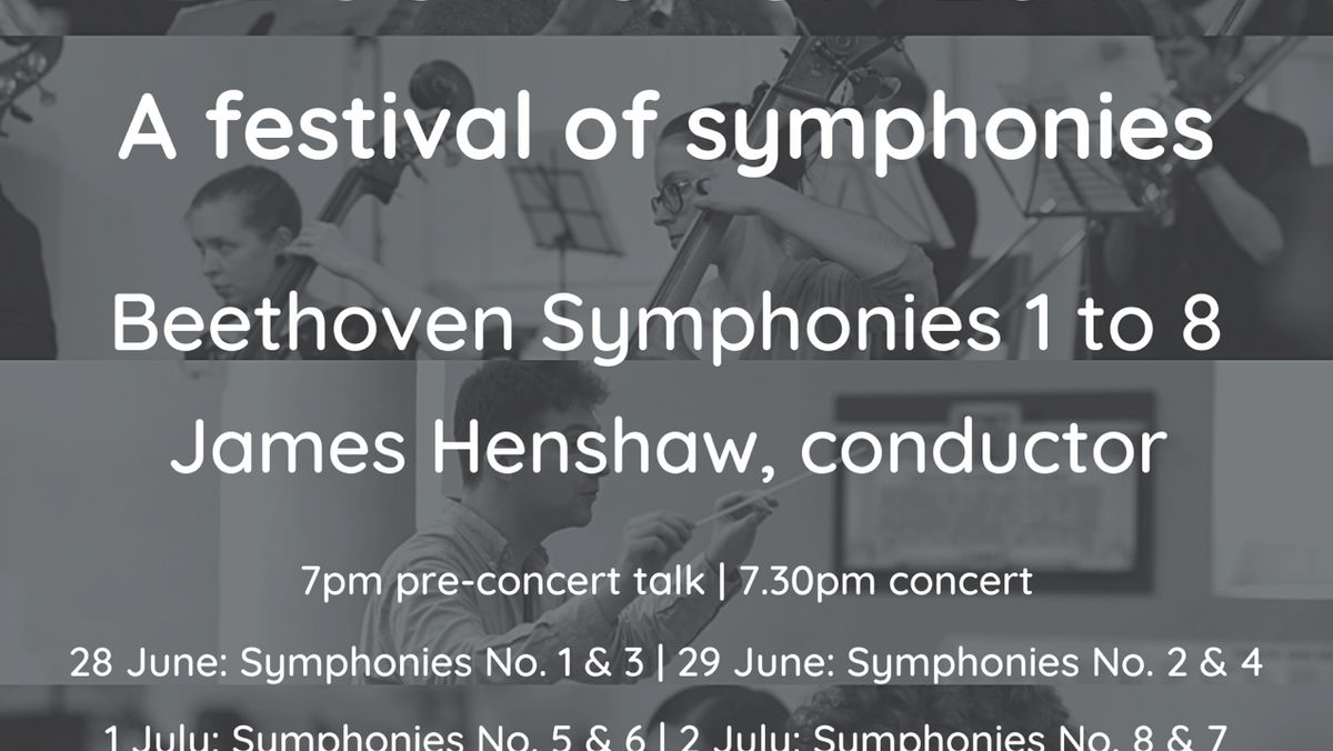 Beethoven 251 - Festival Of Symphonies