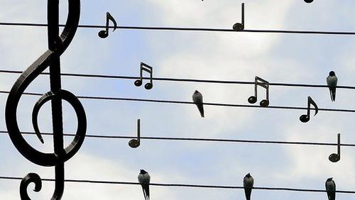 Temauge: Fællesskab  -  Sangeftermiddag