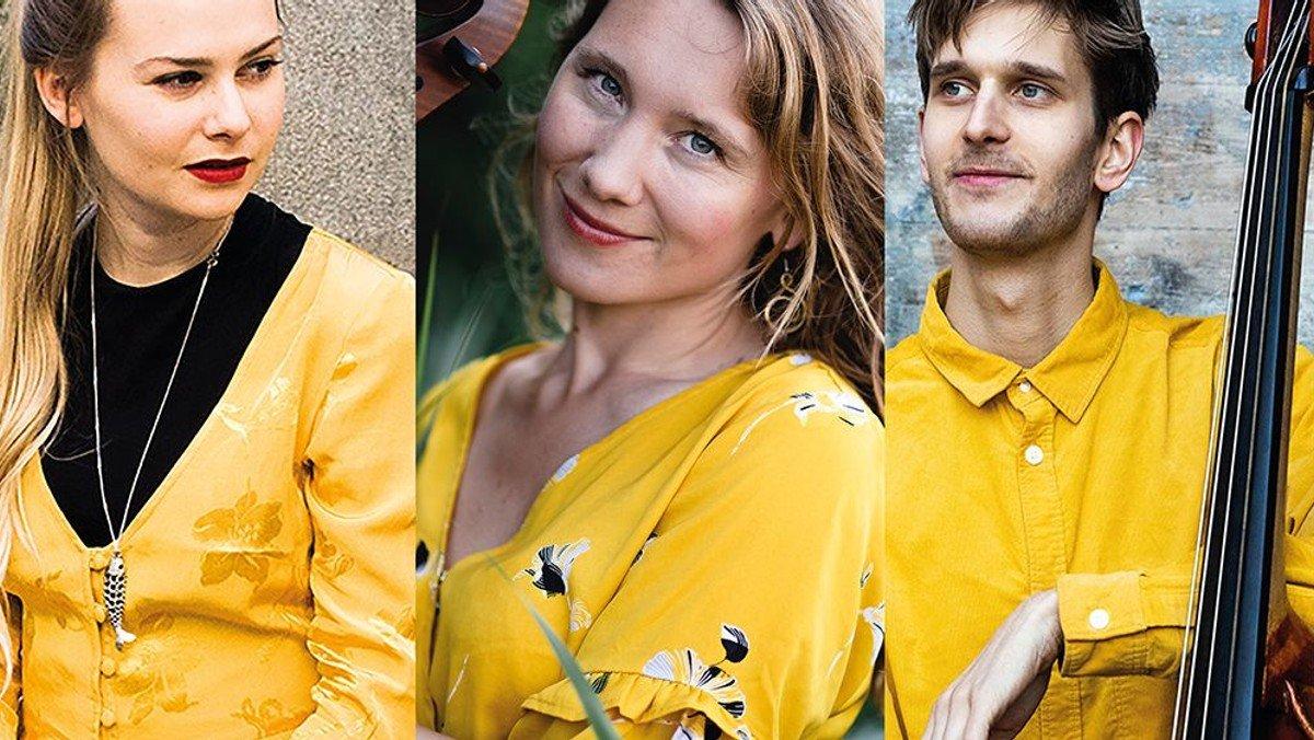 Koncert med Bergcrantz/Fjeldsted/Havelund Trio