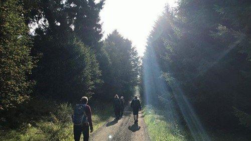 Pilgrimsvandring