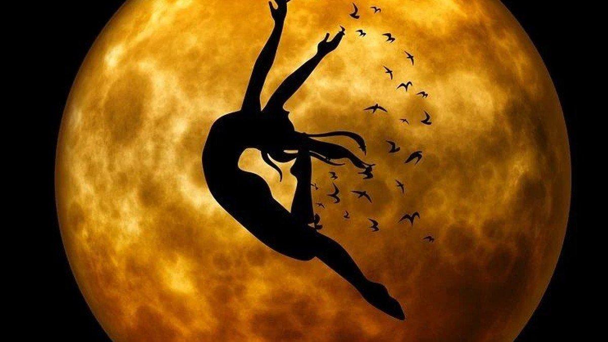 Andagt-  Hvorfor danser Visdommen