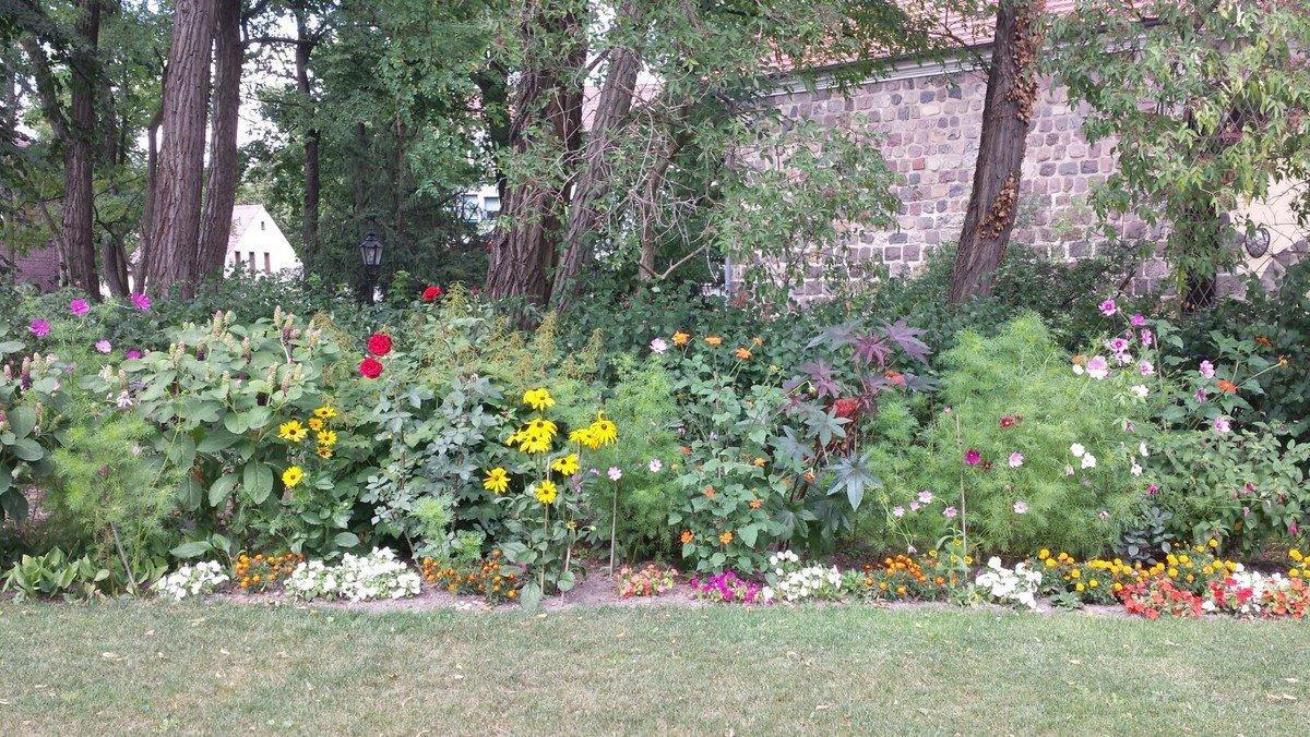 Musikalische Sommerandacht im Kirchgarten