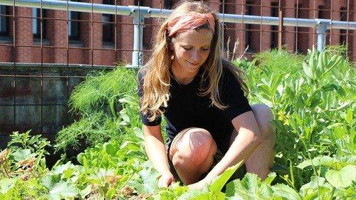 Sommerhøjskole: Urbant bylandsbrug - jordforbindelse og grønt fællesskab i byen