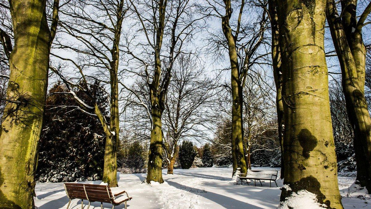 Fællessang: Vinter