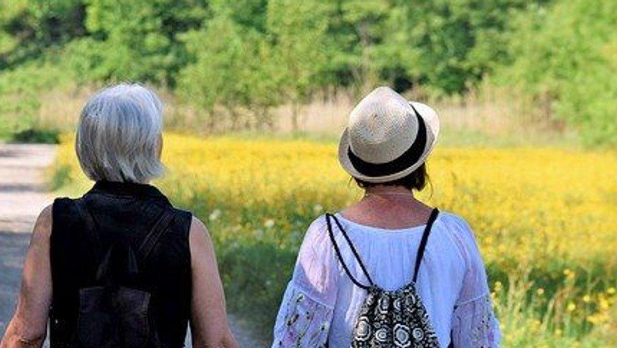 Gemeinsam auf dem Pilgerweg