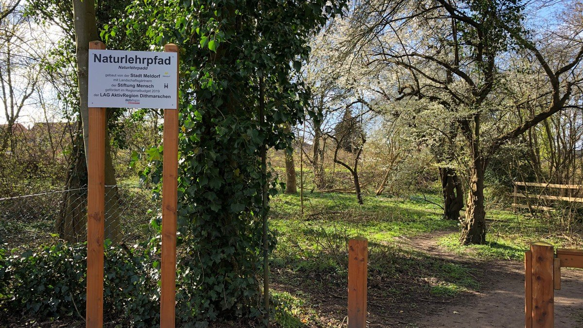 Naturnahe Gärten, Vortrag und Workshops