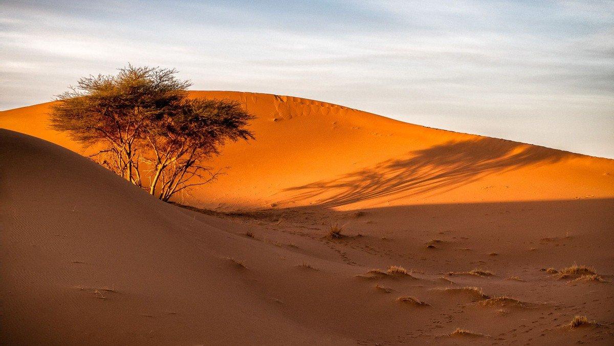 Drei Frauen gehen durch die Wüste und machen Wüste erfahrbar