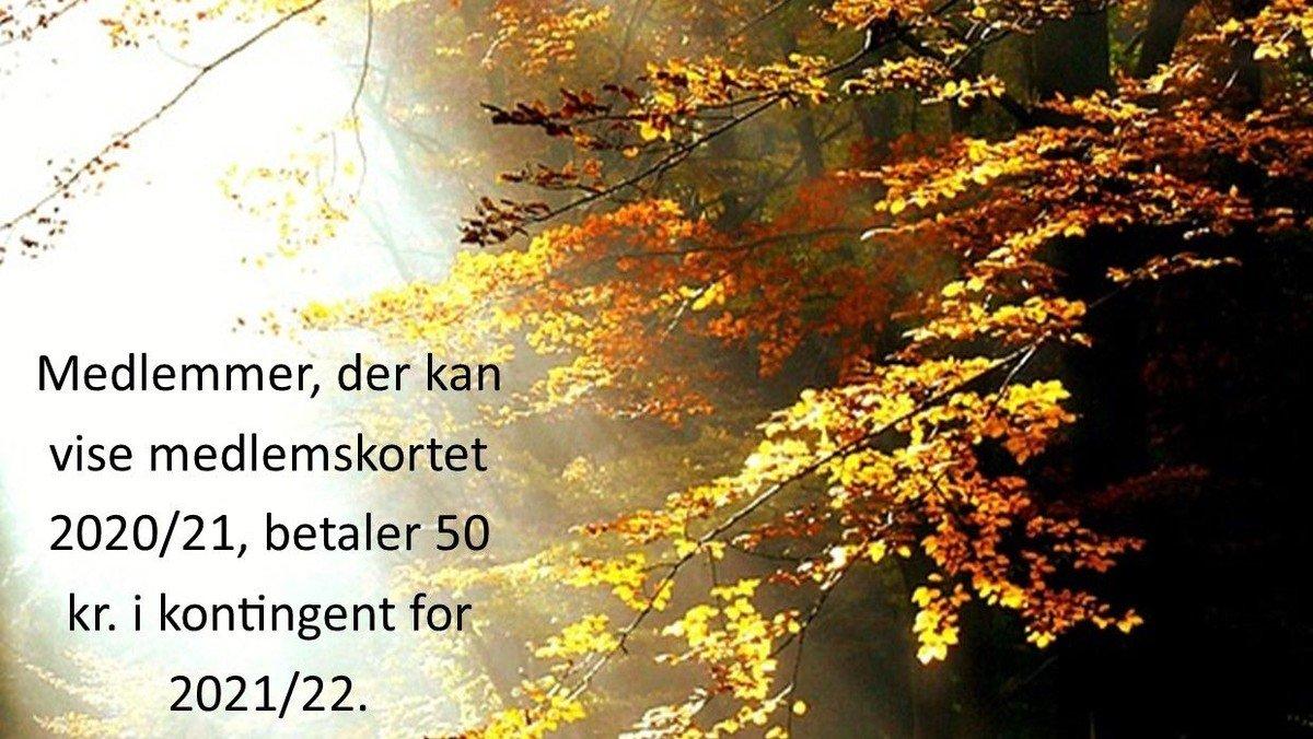 """Eftermiddagsklubben - Anette Lindegaard - foredrag """"At leve i bevidst kærligt nærvær."""""""