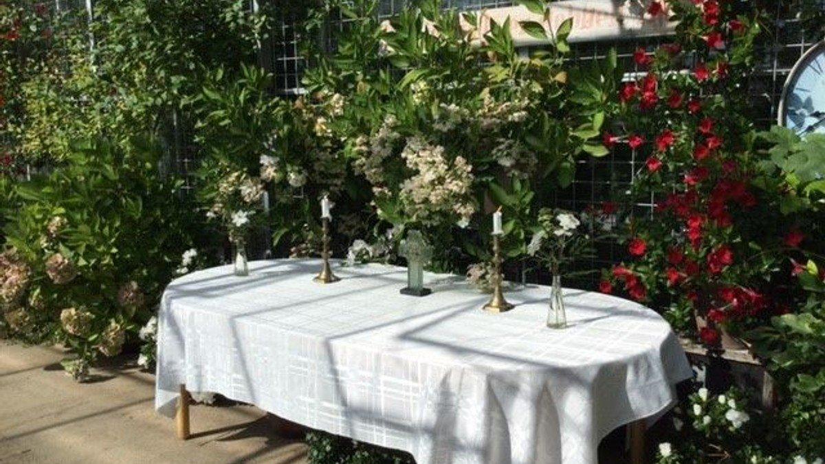 Friluftgudstjeneste ved Knopgården i Vrads med dåb