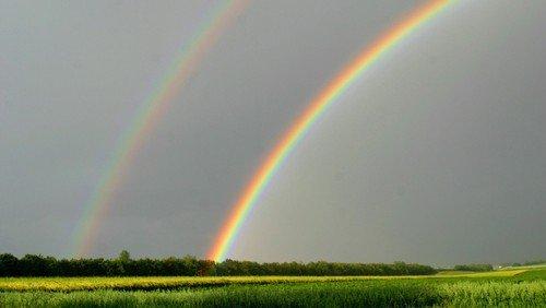 Regenbogengottesdienst Open-Air vor dem FQZ