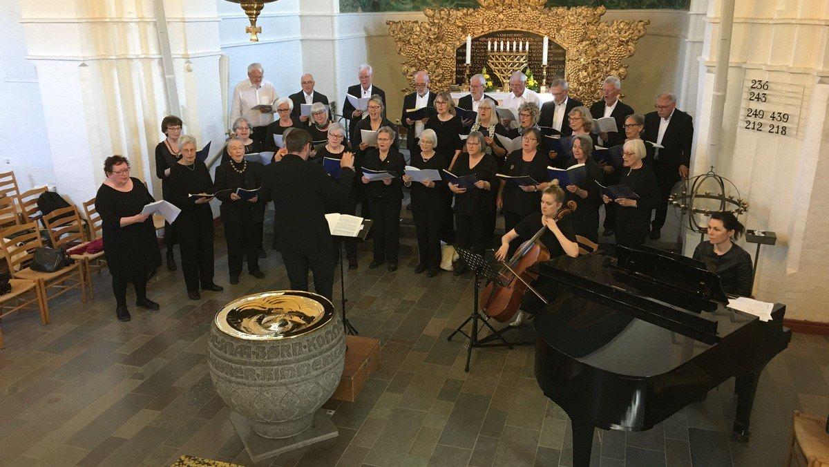 Julekoncert med koret Sangtus, dirigent Johannes Rodh