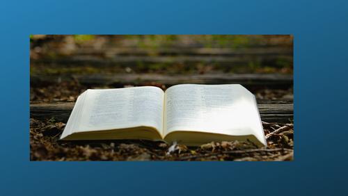 Bibelstudie - Hovedlinjer i 2. Mosebog III