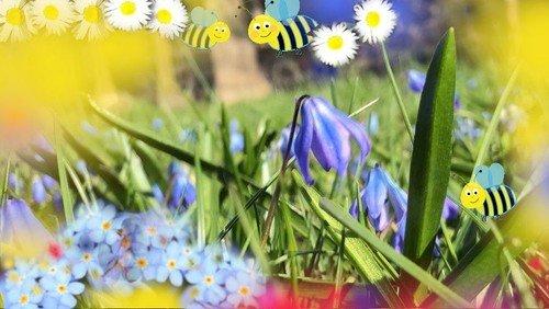 Die Bienen sind los