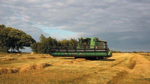 Høstgudstjeneste, Holtug