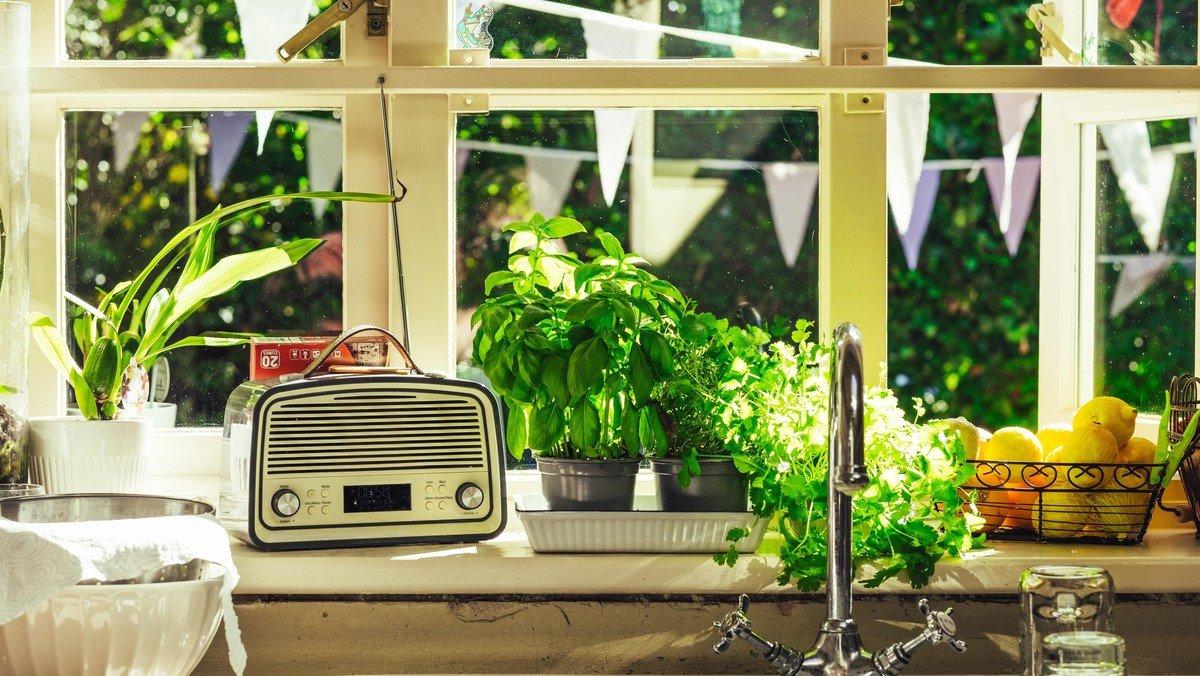 Radio-Gottesdienst aus St.Marien auf Lübeck FM 98,8