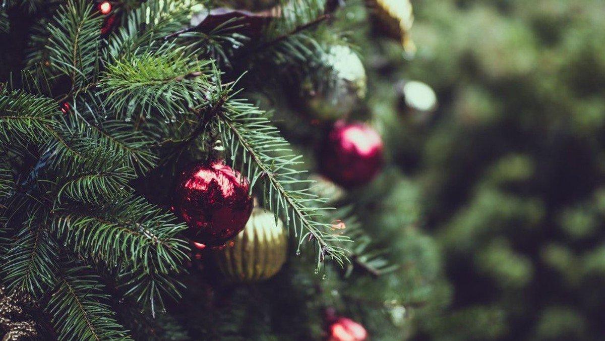 Familiegudstjeneste med juletræstænding i Strøby