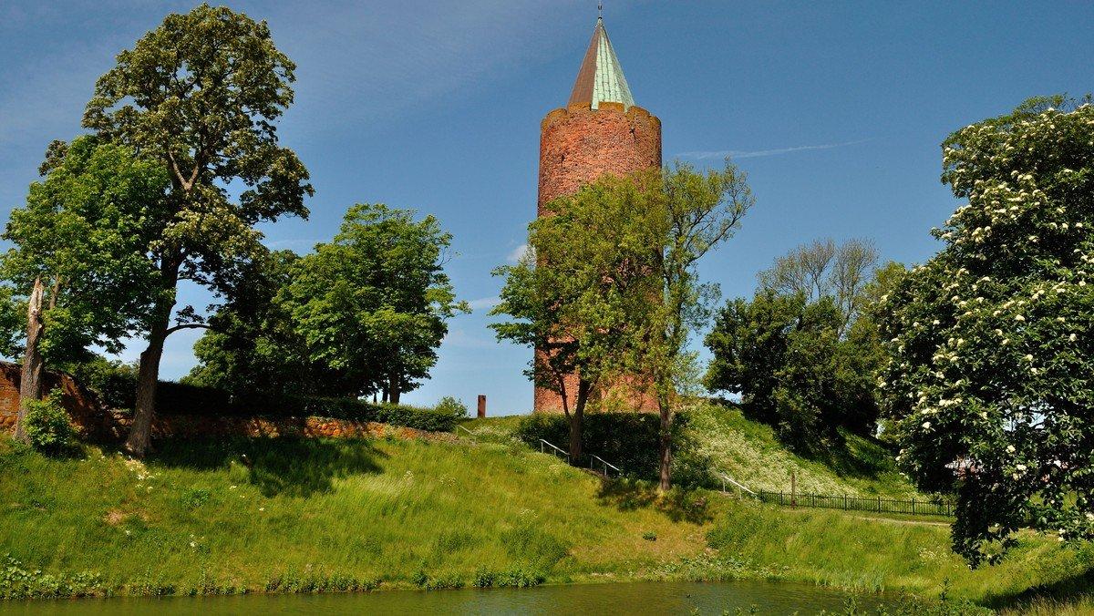 Eftermiddagsmøde, udgravningerne i Vordingborg