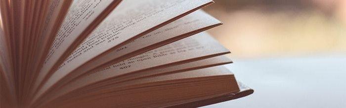 Billedet viser en bog, med sider som en vifte