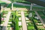 Billeder fra kirkegården