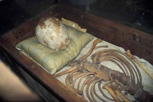 skeletal remains of King Knud