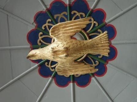 Billede af en due