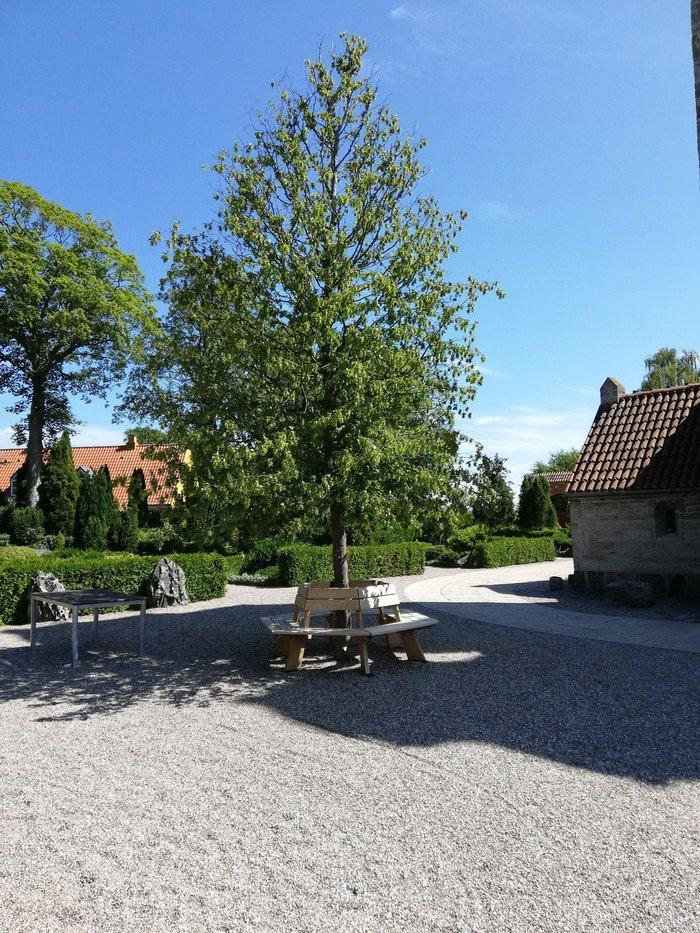 Billede af pladsen foran kirken