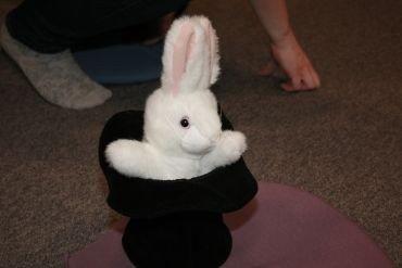 Tøjkanin i hat