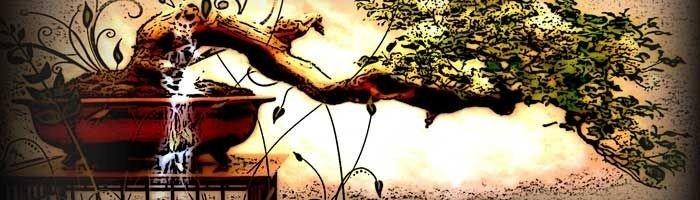 Billede af et bonansa træ