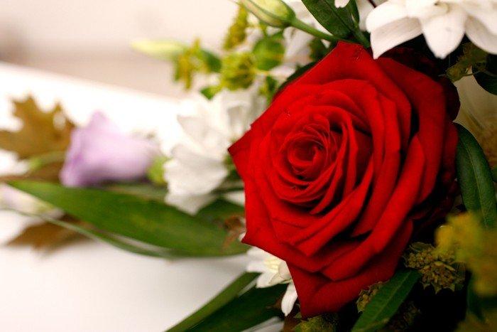 Blomster på kiste