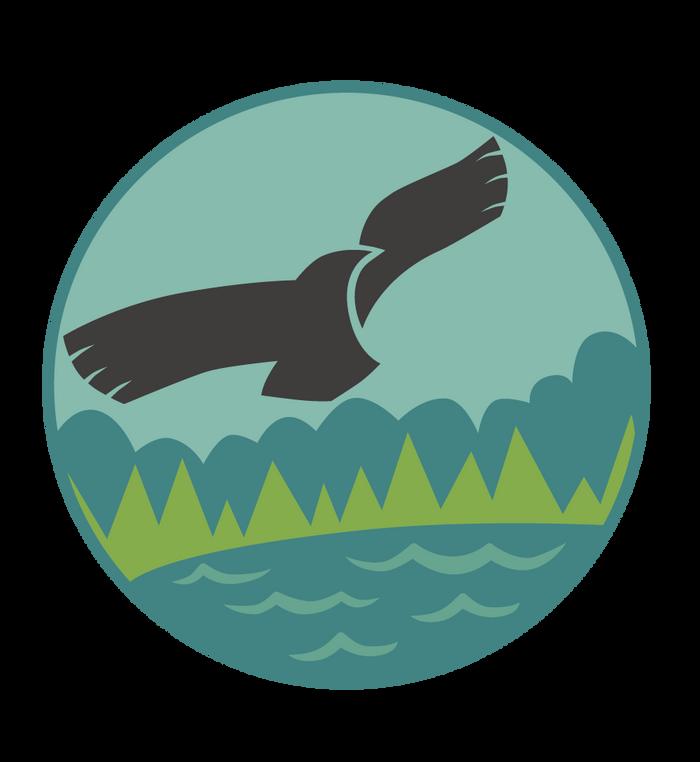 Seeadler Kirchbarkau
