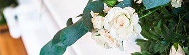 Hvid rose på kiste