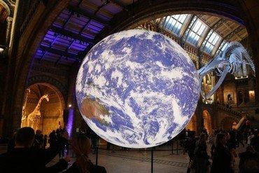 Gaia at the Natural History Museum, 2018