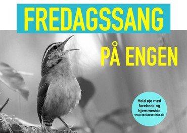 fugl der synger, tekst med info som nedenstående