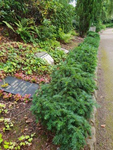 Urnegravsted med opretstående gravsten