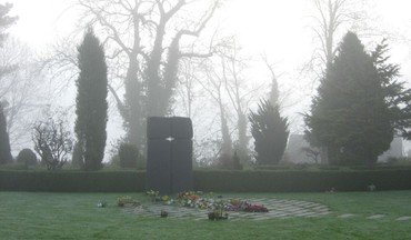 Fællesplænen i tåge