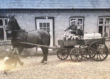 """1949 Københavnerdrengen Erik med karlen Holger Hansen på fjedervognen, klar til en bytur. Begge er i gummistøvler og korte bukser! Erik kigger til fotografen, men kusken koncentrerer sig om hesten, som bliver tirret af hunden """"Sjang""""."""