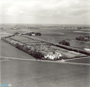 Lillevangsvej 3 med hele frugtplantagen før vejudvidelserne i 1960erne og senere. I baggrunden ses Kærdal og til højre den store sø.