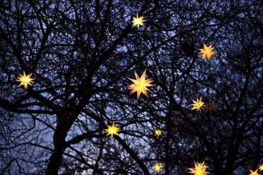 Lysende stjerner på et træ i natten